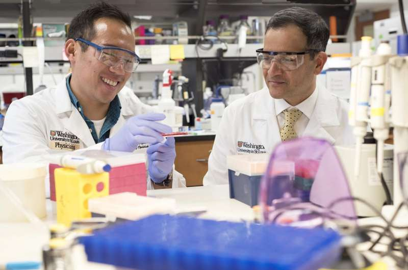 Researchers Identify Treatment Target for Blinding Diseases