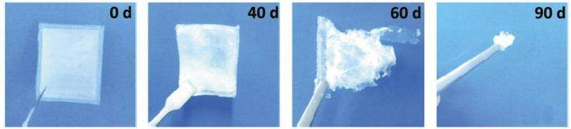 New type of bioegradable nanogenerator for use inside the body does not need external power source