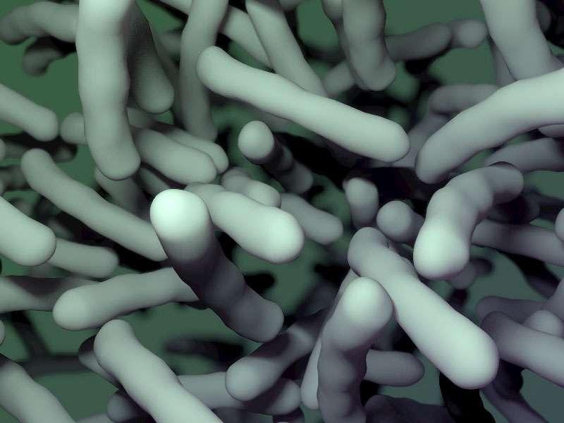 Two new molecules help beta-lactams kill drug resistant bacteria
