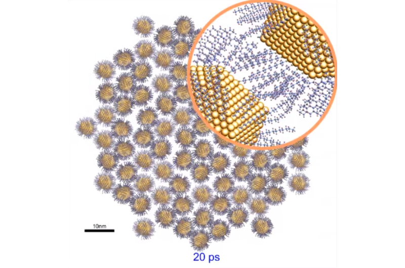 An innovative device studies gold nanoparticles in depth