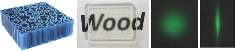 Transparent wood made stronger than glass by applying epoxy