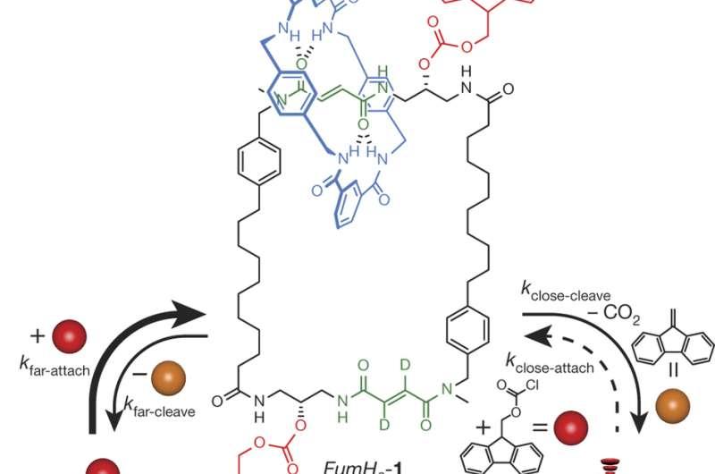 A chemically powered autonomous molecular nanomotor
