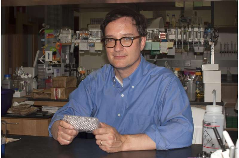 Research may point to new ways to deliver drugs into bacteria