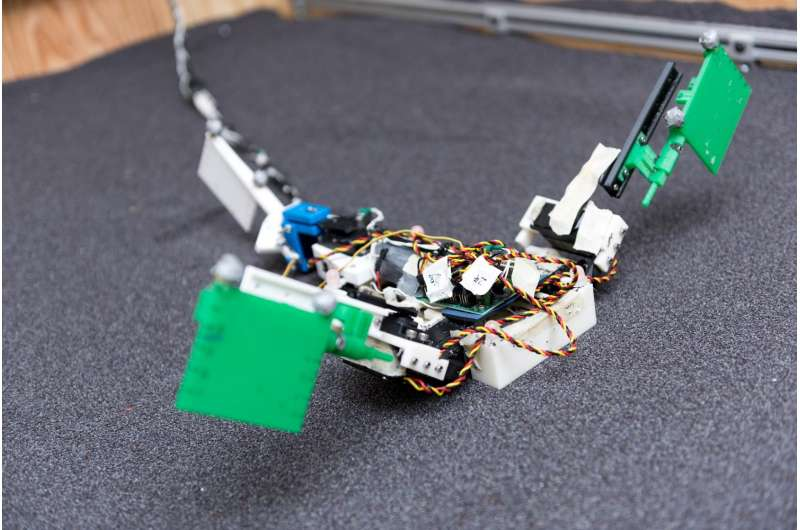 Robot helps study how first land animals moved 360 million years ago