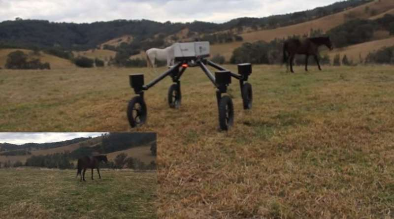 SwagBot being tested as a possible replacement for the cowboy