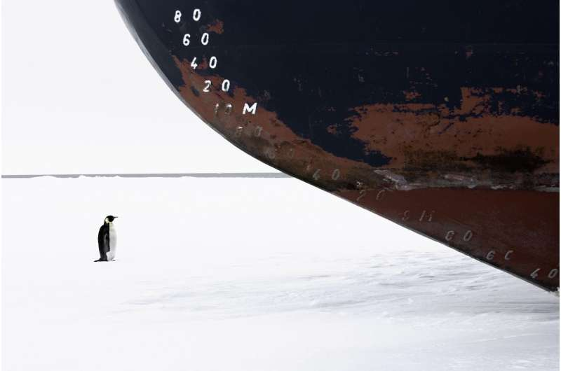 Future of Antarctic marine protected at risk