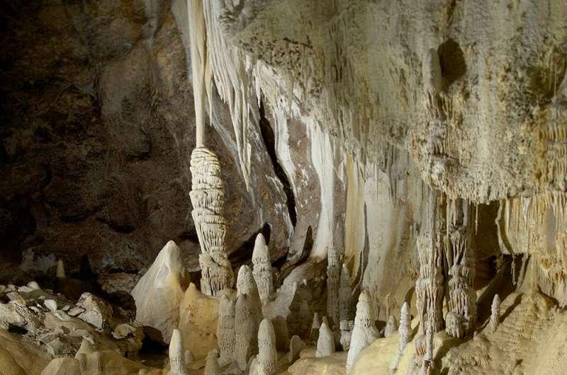 Scientists examine bacterium found 1,000 feet underground