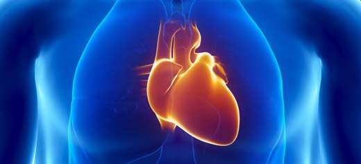 A fighting chance of survival—life-saving stents for heart attacks