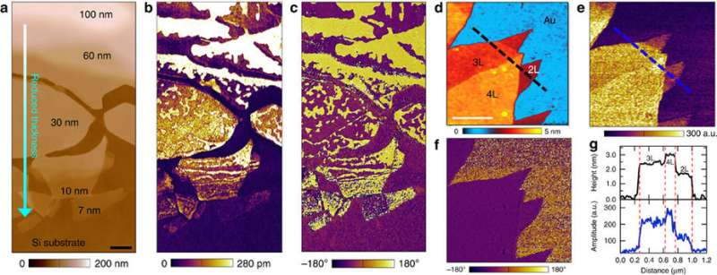 AFM and piezoresponse images of CIPS with different thicknesses