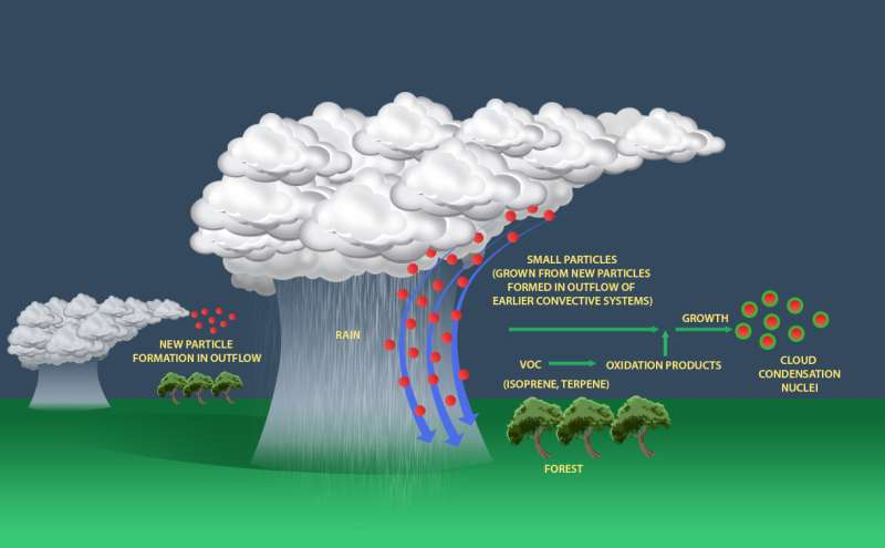 Amazon rainstorms transport atmospheric particles for cloud formation