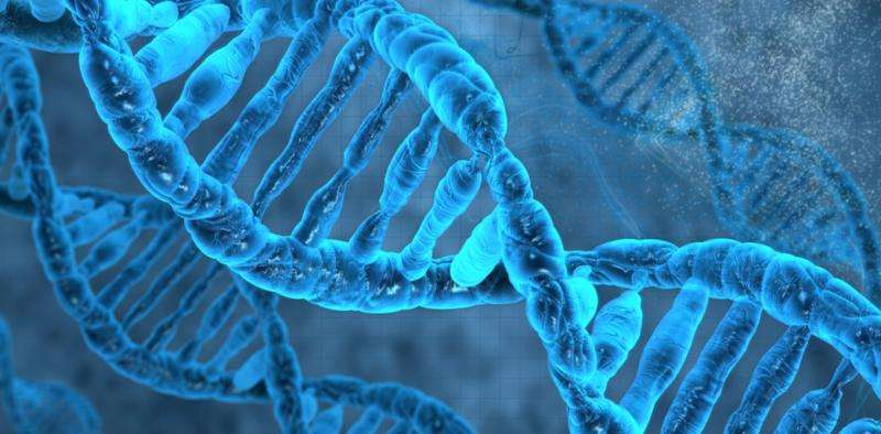 An ancient retrovirus has been found in human DNA – and it might still be active