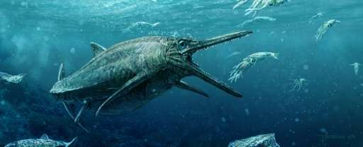 An artist's rendering of a Jurassic marine reptile which was a member of the ichthyosaur family, in a photo relesed from the Uni