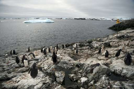 A new marine reserve aimed at protecting the pristine wilderness of Antarctica will cover more than 1.55 million square kilometr