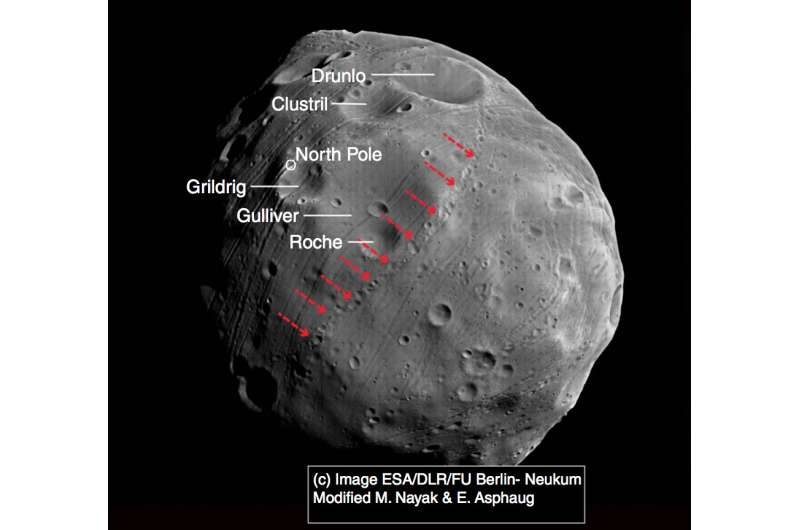 Anomalous grooves on Martian moon Phobos explained by impacts