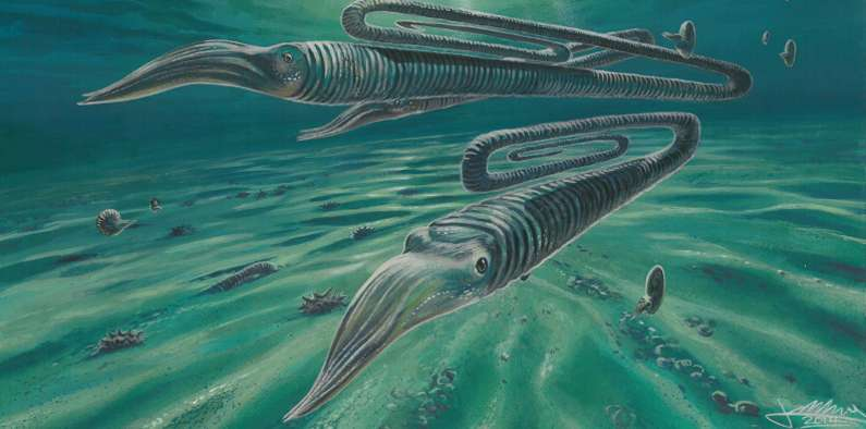 Antarctic fossils reveal creatures weren't safer in the south