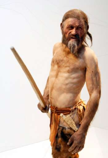 A reconstruction of the iceman named Oetzi, who lived during the Late Neolithic or Copper Age, by Dutch experts Alfons and Adrie