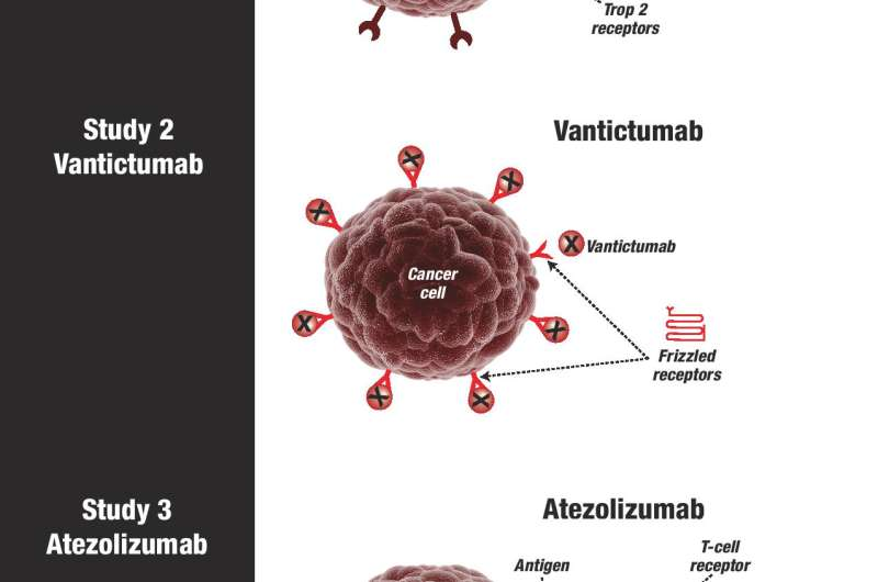 ASCO: Finally, targeted therapies for triple-negative breast cancer