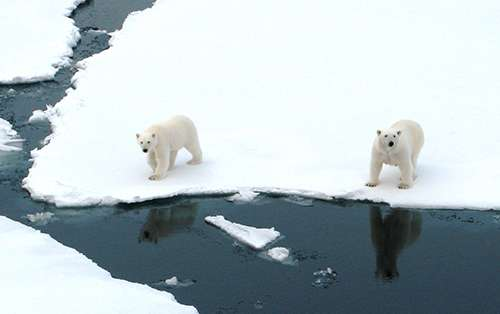 As sea ice retreats, will wind stir up Atlantic water heat in the Arctic Ocean?
