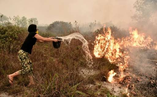 A villager tries to extinguish a peatland fire on the outskirts of Palangkaraya city, Central Kalimantan