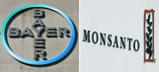 Bayer's takeover of Monsanto will likely face close scrutiny as debate rages in Europe over the use of genetically modified crop