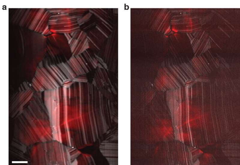 Beating the limits of the light microscope, one photon at a time