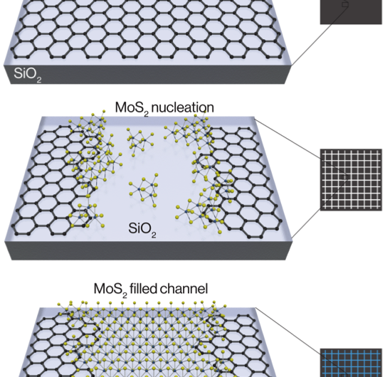 Berkeley Lab scientists grow atomically thin transistors and circuits