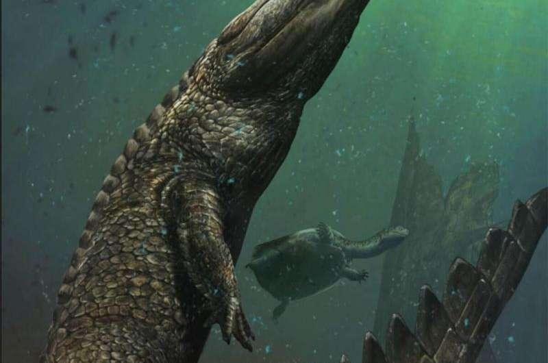 Bone-crushing prehistoric reptile the largest marine crocodile ever discovered