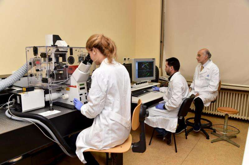 Brain boost: ONR Global sponsors research to improve memory through electricity