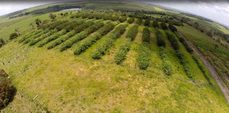 Bringing nitrogen out to pasture