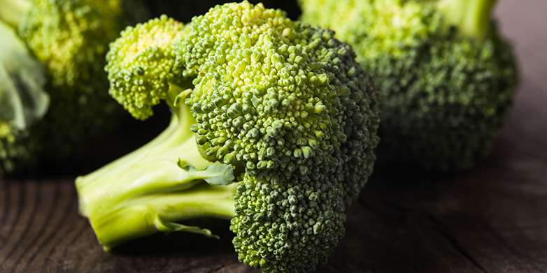 Broccoli ingredient has positive influence on drug efficacy