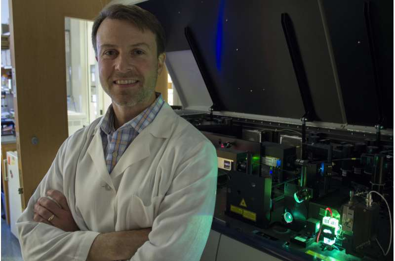 Cancer checkpoint drug target governs metabolic changes in exhausted T cells
