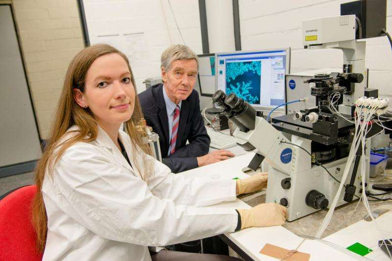 Capsaicin molecule inhibits growth of breast cancer cells