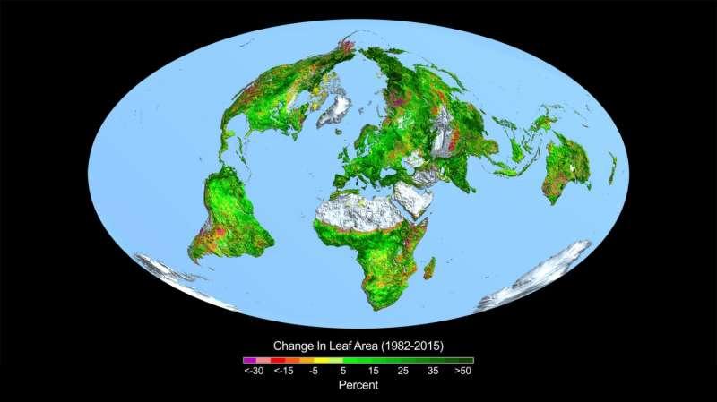 Carbon dioxide fertilization greening Earth, study finds