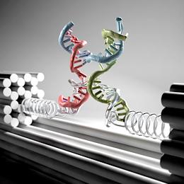 Characterizing the mechanical properties of biomolecules