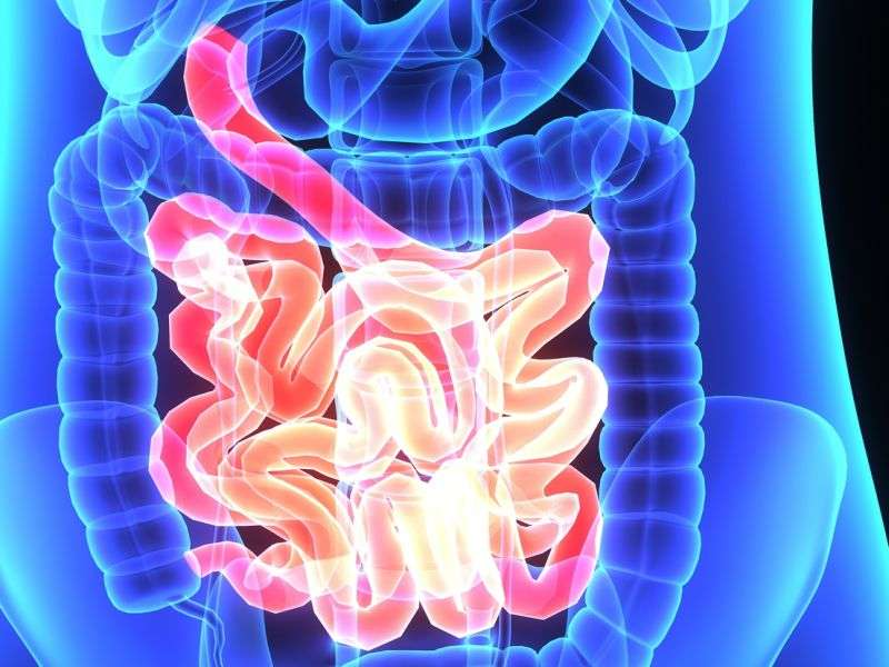 Chewing gum improves colonoscopy preparation
