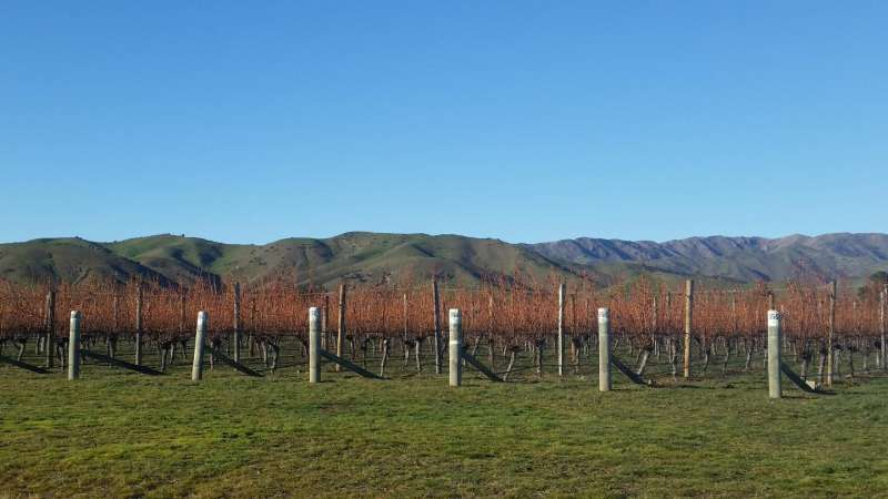 Cooler and wetter: Study links irrigation to inaccurate climate perception