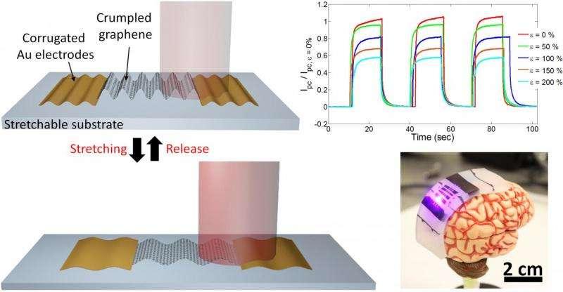 Crumpling approach enhances photodetectors' light responsivity