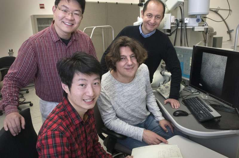 DNA shaping up to be ideal framework for rationally designed nanostructures