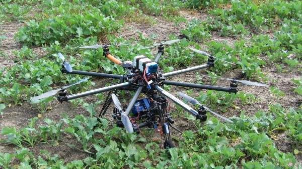 Drones diagnose plant health and decrease insecticide use