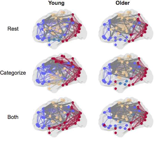 Elders use brain networks differently for short-term recall