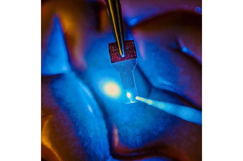 Engineers reveal fabrication process for revolutionary transparent sensors