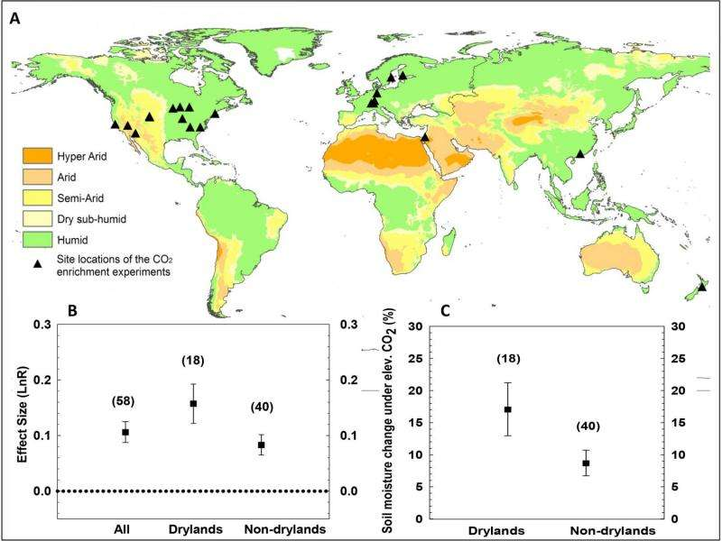 Enhanced levels of carbon dioxide are likely cause of global dryland greening, study says