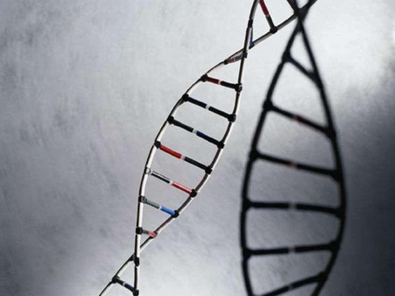 Exposure to LDL-C-lowering genetic variants ups T2DM risk