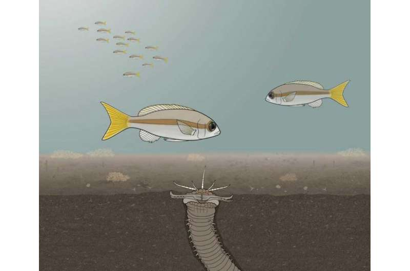 Fish Against Monster Worms