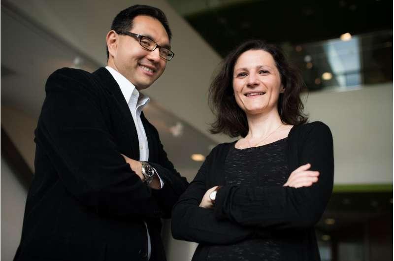 Foreign language teachers facing a confidence conundrum
