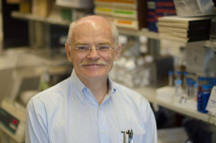 Georgetown researchers describe method to study real time cancer invasion