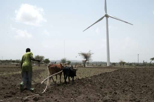 Global growth of renewables continues apace despite depressed oil prices