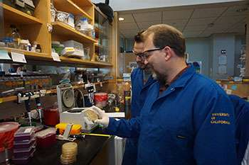 Gut pathogens thrive on body's tissue-repair mechanism