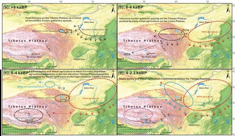 How did prehistoric humans occupy the Tibetan Plateau?
