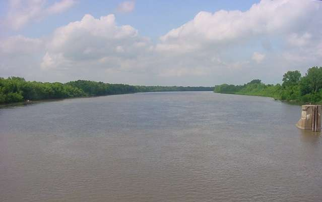 Illinois River water quality improvement linked to more efficient corn production